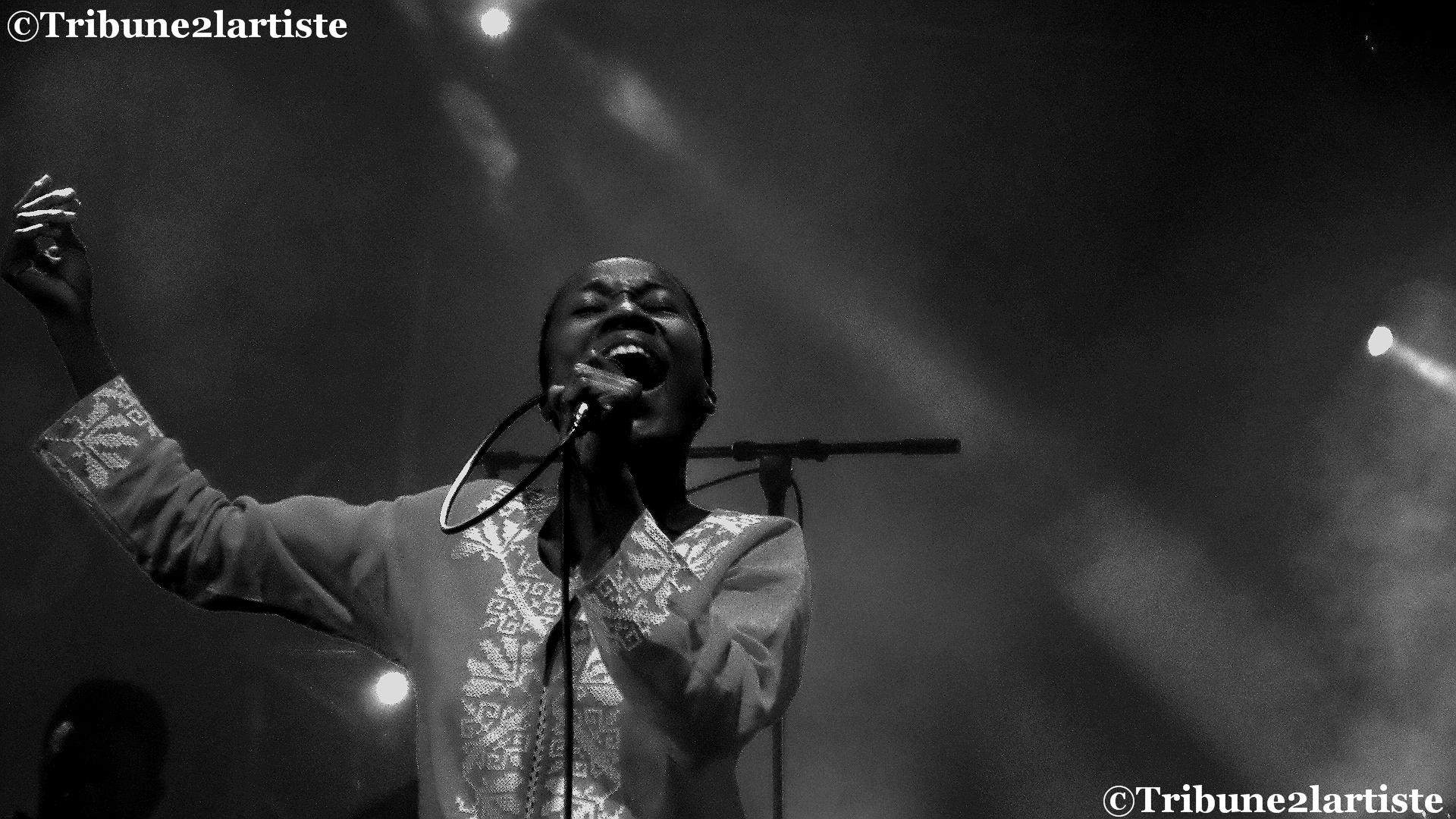 Rokia Traoré a traversé les Traver'cé musicales des Ponts-de-Cé avec l'autorité d'une grande.